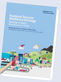 National Disaster Resilience Strategy