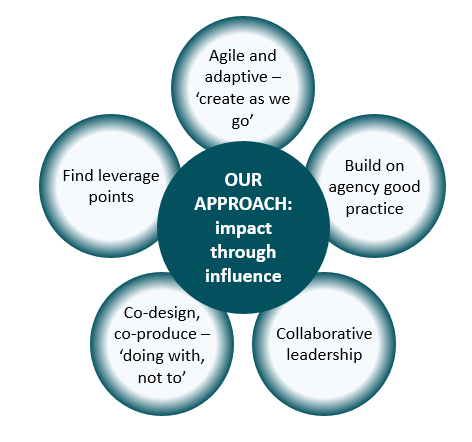 The approach of the policy project team